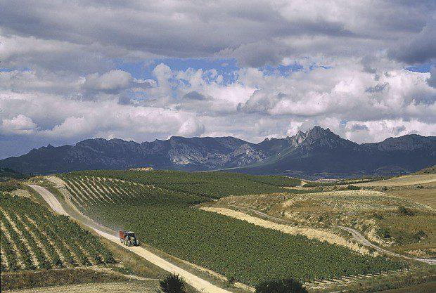 Bodegas Valdemar Conde Valdemar Rioja Gran Reserva 2011